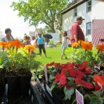 Neighbors plant and mingle at 'Bloom and Groom' events