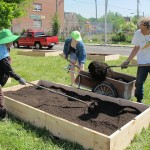 Victory Garden Initiative aims to make city 'harvestable'