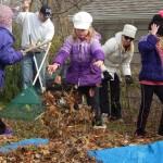 How to volunteer in October