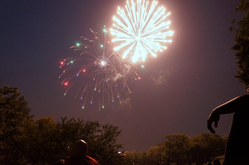 Last year's fireworks in Mitchell Park. (By Adam Carr)