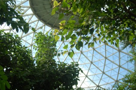 Repairs on the Tropical Dome were completed on Sept. 23. (Photo by Edgar Mendez)
