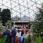 County celebration marks re-opening of Mitchell Park Domes