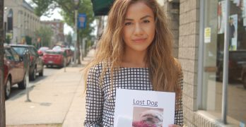 On the Block: Have you seen this dog?