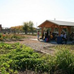 Alice's Garden wins prestigious MANDI award