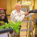 Urban agriculture program returns to Vincent High