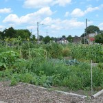 Lindsay Heights groups cultivate Bloomberg's support for Milwaukee