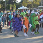 Wellness walk promotes formula for good health