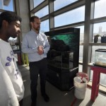 Aquaponics classes introduce students to STEM careers