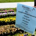 Southside Organizing Committee's 2015 Neighborhood Fair
