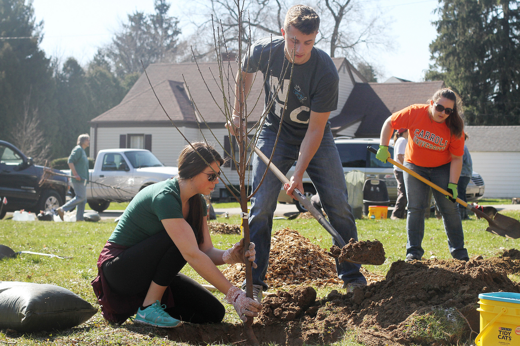 Volunteers plant a pear tree in a vacant lot in Hales Corners as part of the Fruity Nutty Five Contest in April, 2016. (Photo by Hannah Kiger, Victory Garden Initiative)
