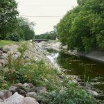 Volunteers choose rivers over retail on Black Friday