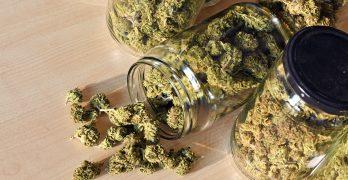 NNS reporter Analise Pruni discusses marijuana legislation on WGLB-AM 1560's 'Morning Mix'