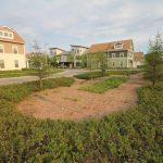 NNS on WGLB radio: The transformation of Westlawn Gardens